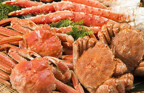 さまざまな蟹の種類や特徴を知ろう!